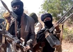 Calling them Bandits Wrong, Nigeria-Lawmaker Demands Namechange for Bandits